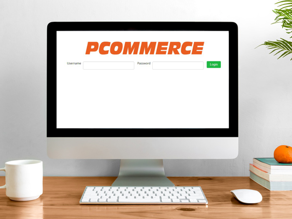 Demo Software Ecommerce